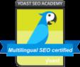 Multilingual SEO certified